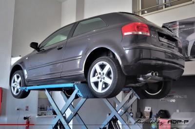 Echappement Cobra Salon de Provence - Audi A3 8P ADP Performance